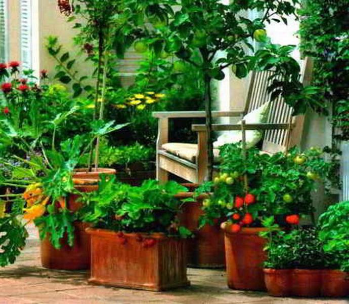 Огород на лоджии