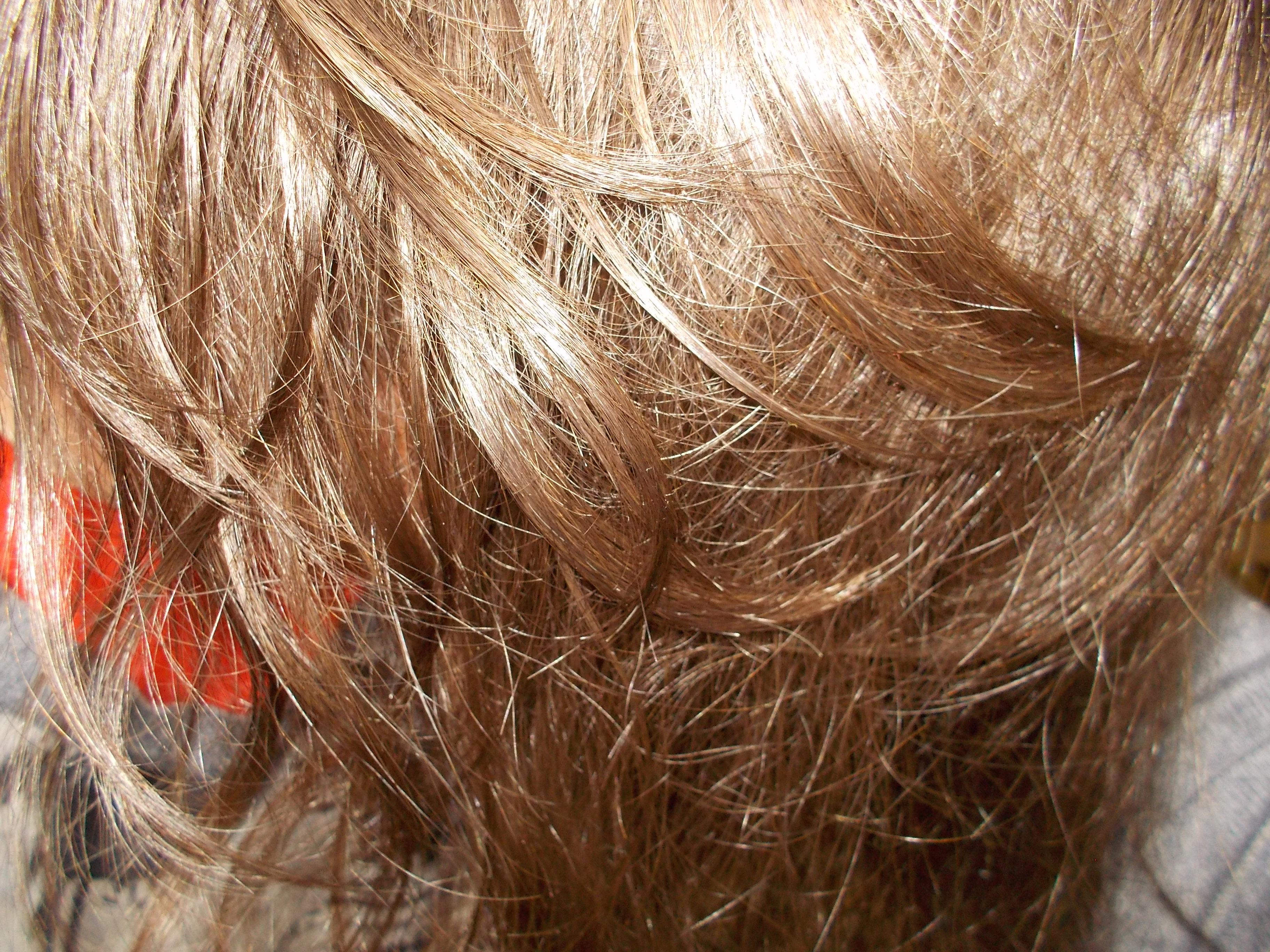 Urtekram шампунь-объем для жирных волос с вулканической глиной рассул