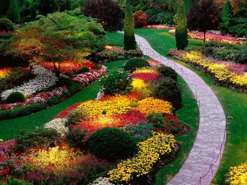 Дизайн сада цветами